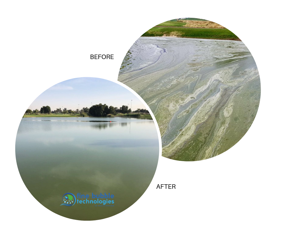 golf water treatment solutions
